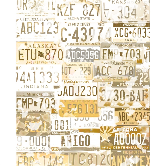 License Plate $225